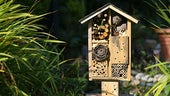 A wooden house for insects