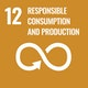 SGG 12 Responsible Production and Consumption