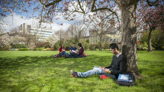 Male and female students studying under trees on sunny day, with Main Building in background