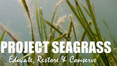 Project Seagrass
