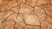Drysoil