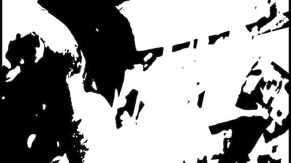 hallucination black and white