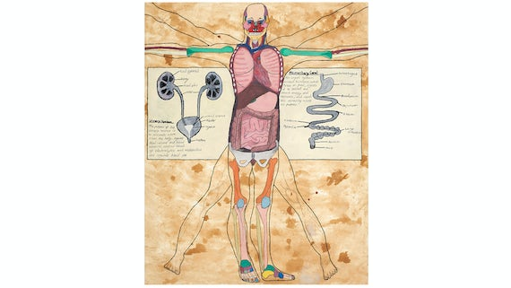 Vitruvian man inspired depiction of donated bodies to medical science