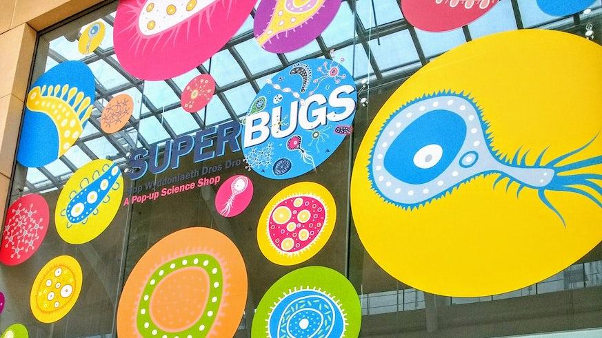 Image of the Superbugs storefront