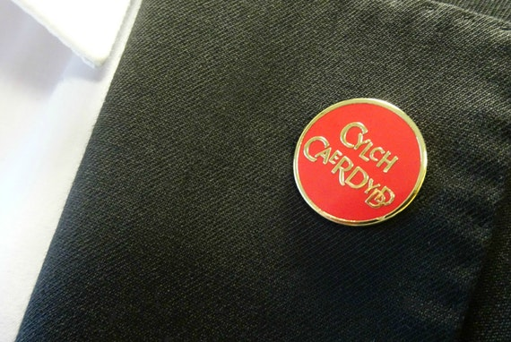 Cylch Caerdydd pin