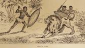 Thomas Morgan Thomas, Un-mlynedd-ar-ddeg yn nghanolbarth deheuol Affrica (1873)