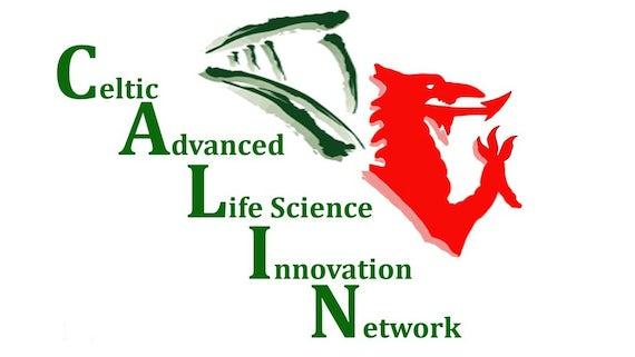 CALIN Logo
