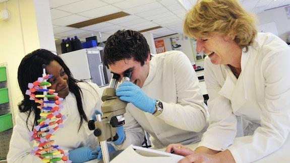 Cardiff University Medical School