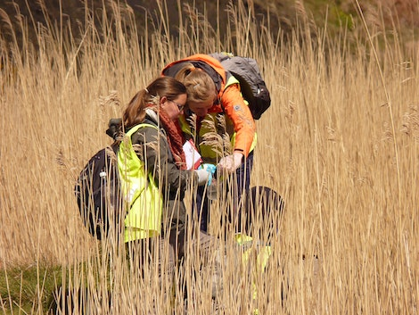 Environmental geoscience study in South Wales