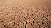 Dry Easrth