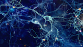 illustration of neurons with glowing cells