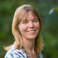 Prof Amanda Coffey