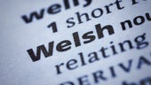 Welsh - Definition