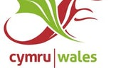 Commonwealth Welsh logo