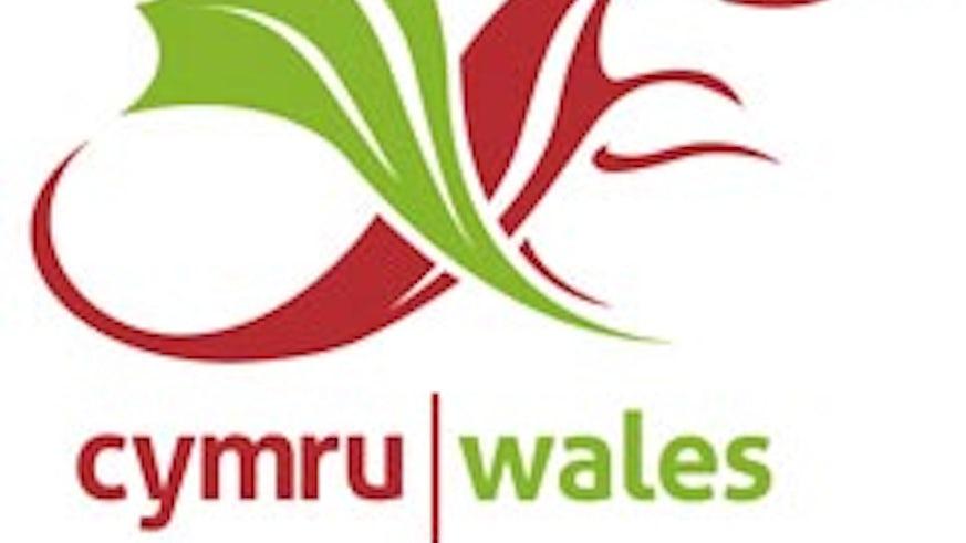 Commonwealth Welsh logo