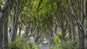 Game of Thrones set in Northern Ireland