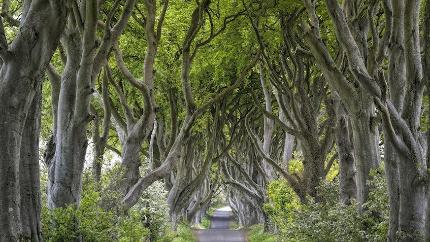 Game of Thrones set in Northern Ireland