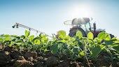 Farming in field