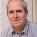 Professor Adrian Mander