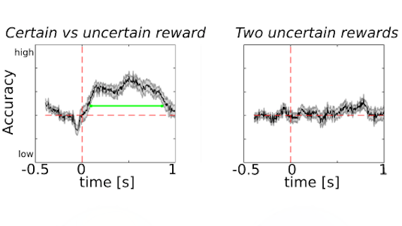 Two graphs showing the difference in brain activity between participants who knew they were getting a reward at the end of a task and participants who were not sure if they would get a reward at the end of a task