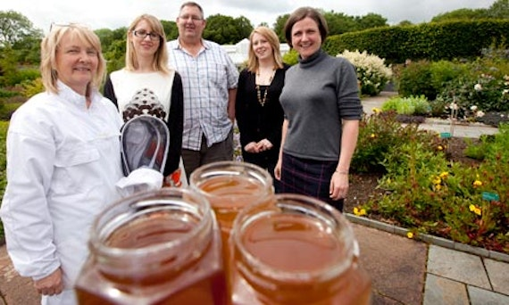 prof baillie and bee team