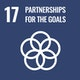 SDG 17 Partnerships