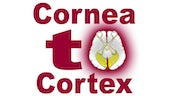 Cornea to Cortex