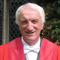 Professor Richard Lewis