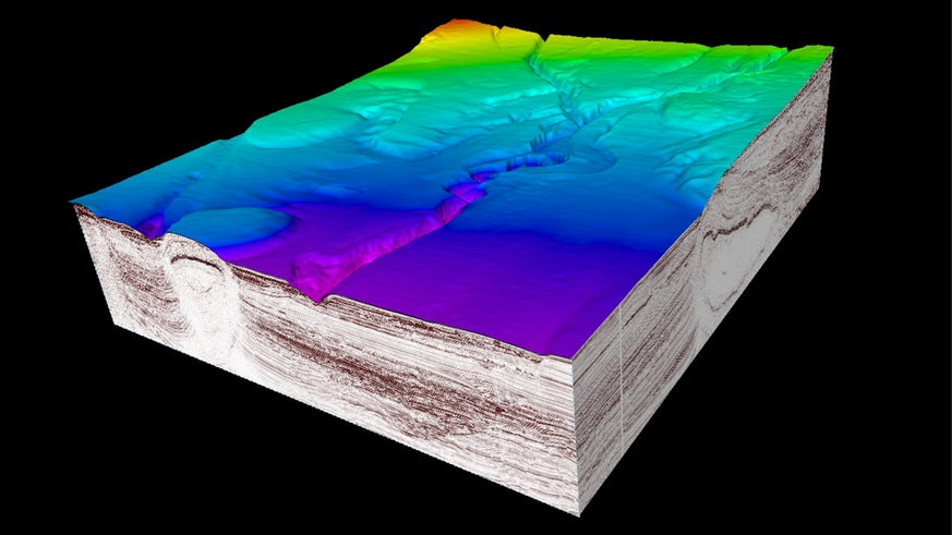 Seismic section of a submarine basin