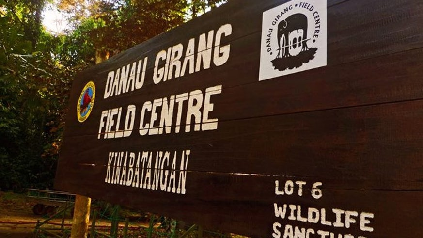 Wooden painted sign for Danau Girang Field Centre