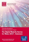 Summary Digital Maturity Survey 2017