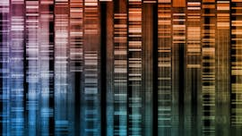 Abstract image to represent genetics