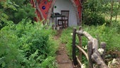 Red hut in grassy woodland garden