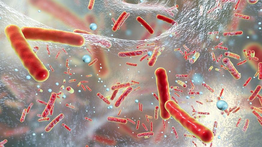Superbugs 2