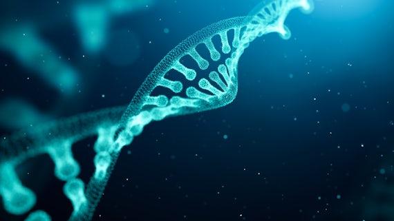 Image of genes