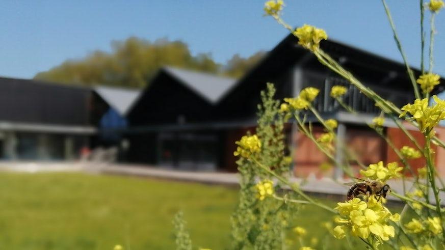 Grange Pavilion and Grange Gardens