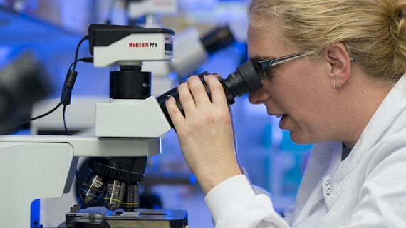 Female researcher looking into microscope