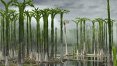 Reconstruction of Devonian lycopod forest in Svalbard