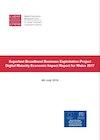 Digital Maturity Economic Impact Report 2017