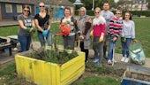 CSC Unit gardening at Grange Pavilion
