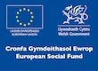 Welsh Government's European Social Fund