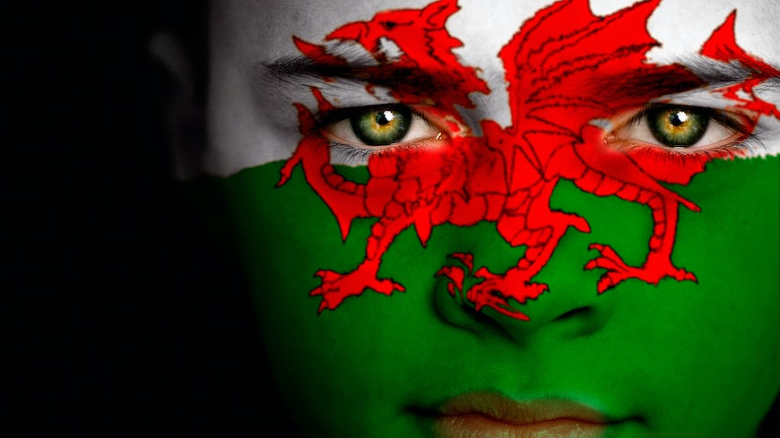 Welsh flag painted on face