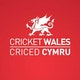 Cricket Wales