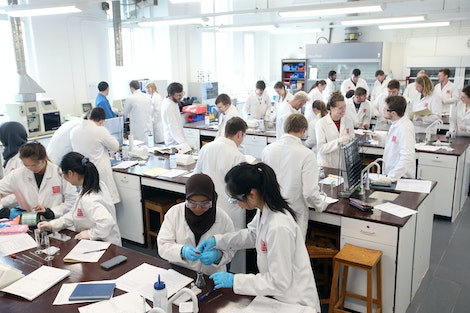 Group of students working in laboratory