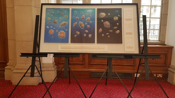 Foraminifera art in the VJ Gallery