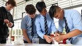 School children taking part in DNA extraction activity