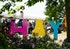 Referendum fallout is among Cardiff University events at 30th Hay Festival