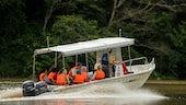 Travel by boat at Danau Girang