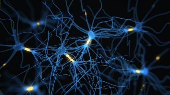 DRI Neurons