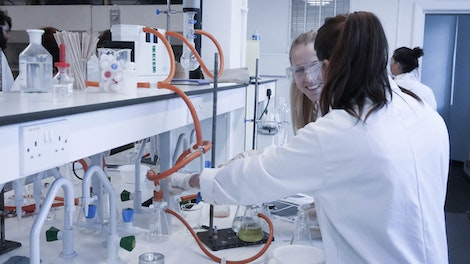 Students work in partners in the lab
